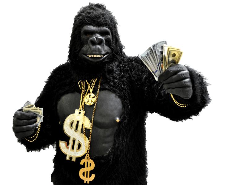 gorilla-feature-image